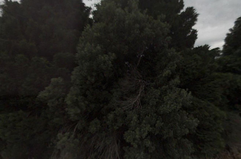 Claude Closky, Screen Shot, 609 Rakaia Gorge Road, Windwhistle, New Zealand